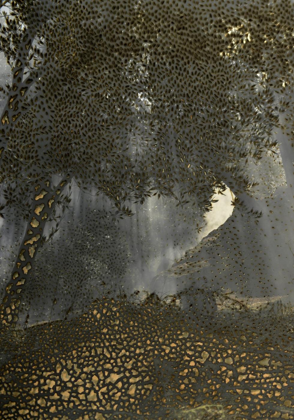 The Aura, @ 2019, Fine Art print on Hanemühle paper with burns, 110 x 160 cm
